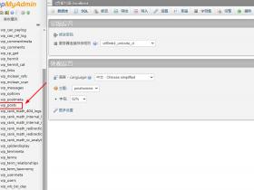 wordpress换新域名后如何批量更改原域名数据库字符数据